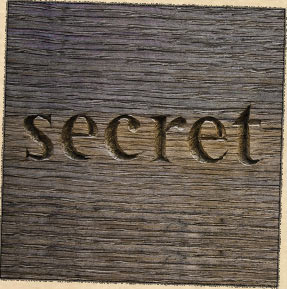 the book called the secret
